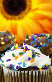 巧克力杯形蛋糕向日葵 库存图片