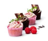 巧克力杯形蛋糕用新鲜的被隔绝的莓和奶油  库存图片