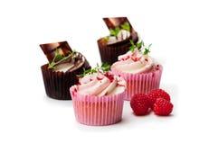 巧克力杯形蛋糕用新鲜的被隔绝的莓和奶油  库存照片