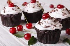 巧克力杯形蛋糕用水平奶油色和新鲜的樱桃 免版税图库摄影