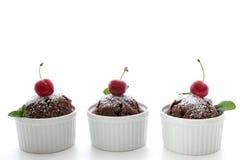 巧克力松饼用薄菏樱桃和叶子在白色backgr的 库存图片