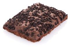 巧克力果仁巧克力蛋糕 免版税库存照片