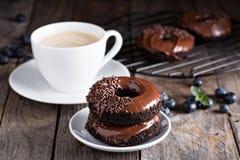 巧克力油炸圈饼用咖啡和蓝莓 库存照片