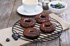 巧克力油炸圈饼用咖啡和蓝莓 图库摄影