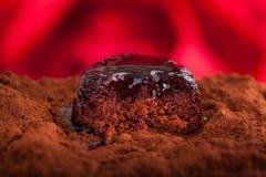 巧克力海绵布丁 库存图片