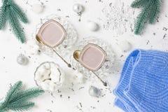 巧克力热饮或可可粉甜冬天饮料 免版税库存图片