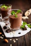 巧克力燕麦粥圆滑的人 免版税库存图片