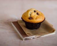 巧克力片松饼 库存照片