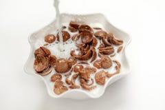 巧克力玉米片和牛奶 免版税库存照片
