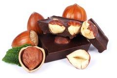 巧克力糖甜点用在白色隔绝的榛子 免版税库存照片