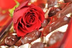 巧克力红色上升了 免版税库存照片