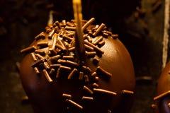 巧克力蛋白甜饼 免版税库存照片