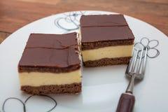 巧克力蛋糕充满香草布丁 库存照片
