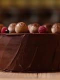 巧克力蛋糕特写镜头用莓,黑醋栗,洒与在褐色的可可粉弄脏了背景 库存照片