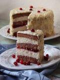巧克力蛋糕用蔓越桔 免版税库存照片