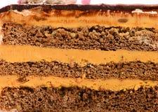 巧克力蛋糕纹理层数与奶油的 特写镜头, backgr的 库存照片