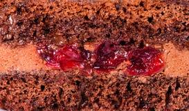巧克力蛋糕纹理层数与奶油的 特写镜头 库存照片