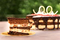 巧克力蛋糕,一个美妙地装饰的蛋糕,轻松的事 免版税图库摄影