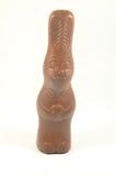 巧克力野兔 库存照片
