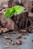 巧克力 黑色巧克力 黑巧克力一些个立方体/块与薄荷叶的 从溢出被磨碎的巧克力平板 免版税库存照片