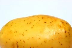 巨人一唯一土豆关闭 库存图片