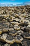 巨人堤道在北爱尔兰 库存图片