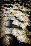 巨人堤道,爱尔兰 免版税库存图片