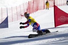 巨人并行障碍滑雪雪板 免版税库存照片