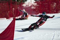 巨人并行障碍滑雪 库存照片