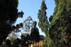 巨人阿弥陀佛菩萨,陈连队寺庙-福兹做Iguaçu 免版税库存照片