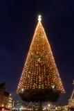 巨型圣诞树 免版税库存图片