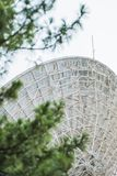 巨型在领域的金属卫星盘与在前面的被弄脏的绿叶 库存照片