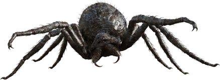 巨型妖怪蜘蛛,昆虫,被隔绝 库存图片