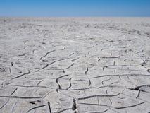 巨型干燥盐舱内甲板或盐平底锅破裂的灰色和白色土壤在博茨瓦纳,南部非洲 库存照片