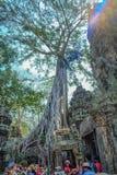 巨型树和蓝天与游人ta phom寺庙的暹粒市柬埔寨 免版税库存图片