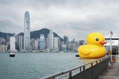巨型橡胶鸭子在香港 库存照片