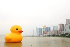 巨型橡胶鸭子访问澳门 免版税库存图片