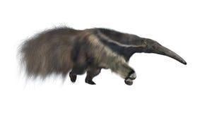 画巨型现有量水彩的食蚁兽 免版税库存图片
