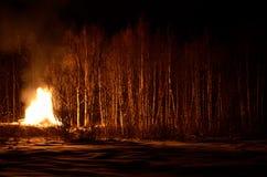 巨型的篝火在冬天夜桦树森林里 免版税库存照片