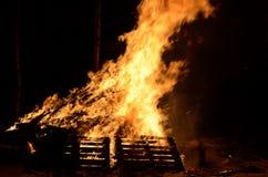 巨型的篝火在冬天夜桦树森林里 免版税库存图片