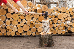 巨型的轴用精神手在桦树残余部分黏附了 免版税库存图片