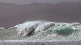 巨型的Waimea海湾风暴海浪 免版税库存照片