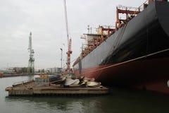 巨型空的集装箱船在船坞 免版税库存图片