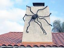 巨型蜘蛛 免版税库存照片