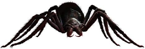 巨型蜘蛛3D例证 库存例证
