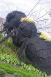 巨型黄蜂 免版税图库摄影