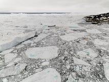 巨大的冰山的鸟瞰图在格陵兰 免版税库存图片