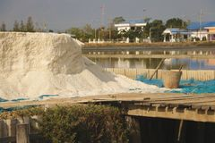 巨大的堆与木篮子的海盐 库存图片