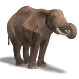 巨大的大象 库存例证