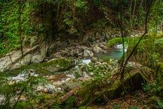 巨大的岩石和一条小河在一个绿色公园 菲律宾 巴伦西亚,海岛内格罗斯岛 图库摄影